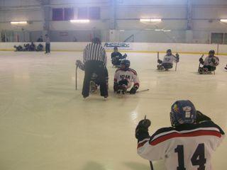 Buffalo Sports 015