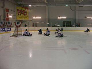 Buffalo Sports 011